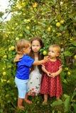Hermanas y hermano en el jardín Foto de archivo