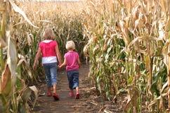 Hermanas y un laberinto del maíz Imagen de archivo libre de regalías