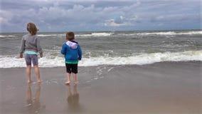 Hermanos en la playa almacen de metraje de vídeo