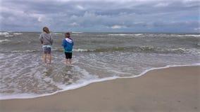Hermanos en la playa almacen de video