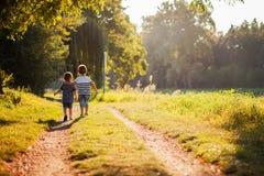Hermanos que caminan en un parque Fotografía de archivo libre de regalías