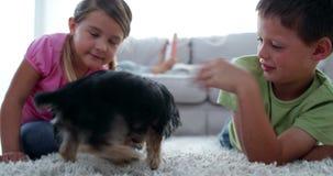 Hermanos que juegan con el perrito y el hueso con su lectura de la madre en el sofá almacen de metraje de vídeo