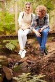 Hermanos que se sientan en un puente de madera en un bosque, vertical Fotos de archivo libres de regalías