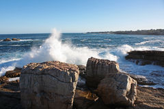 Hermanus Royalty Free Stock Image