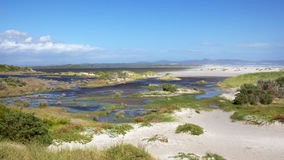 Hermanus Lagoon Stock Photos