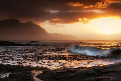 Hermanus, South Africa - Waves hit coastal kelp with golden suns. Hermanus, South Africa - Large waves wash kelp ashore at sunset in Western Cape royalty free stock photo