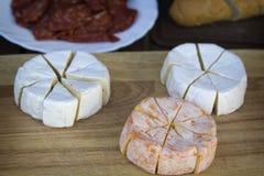 Hermelin ost Fotografering för Bildbyråer