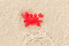Toy red Hermit crab on sand under a shallow sea water with sunlight reflections on the surface of the water. Hermit crab on sand under a shallow sea water with stock image