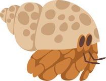 Hermit Crab Stock Images