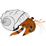 Hermit crab vector Royalty Free Stock Photography