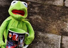 Hermit the Frog Holding Black and White Ceramic Mug Royalty Free Stock Photography
