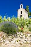 Hermitage, Rhone-Alpes, France. Grand cru vineyard and Chapel of St. Christopher, Hermitage, Rhone-Alpes, France Royalty Free Stock Photos