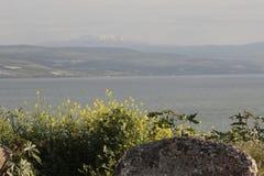 Hermon山看法从内盖夫加利利岸海的  免版税库存照片