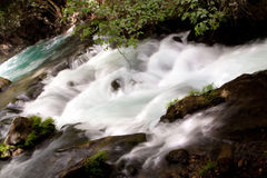 Hermon Stream nature reserve banias Royalty Free Stock Photos
