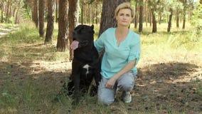 Hermosa mujer en el bosque de verano coníferas con su querido perro Cane Corso negro metrajes