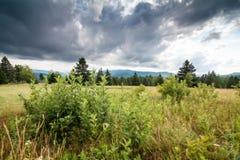 Hermosa vista con las montañas del fondo foto de archivo libre de regalías
