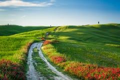 Hermosa vista de campos y de prados verdes en la puesta del sol en Toscana Imagenes de archivo