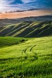 Hermosa vista de campos y de prados verdes en la puesta del sol en Toscana Fotografía de archivo