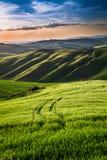 Hermosa vista de campos y de prados verdes en la puesta del sol en Toscana Foto de archivo
