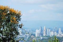 Hermosa vista de la ciudad de Panamá, del ³ n de Cerro Ancà Imagenes de archivo