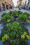 Hermosa vista de la composición de la flor en el extremo de la calle peatonal en el centr de la ciudad imagen de archivo libre de regalías
