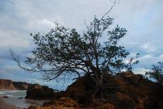 hermosa vista de la naturaleza, pasando por alto una pureza hermosa del mar y de sus rocas, junto con su maravilloso foto de archivo