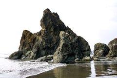 Hermosa vista de la playa en el parque nacional olímpico, Washington, los E.E.U.U. imagen de archivo libre de regalías