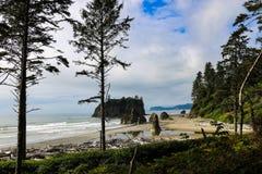 Hermosa vista de la playa en el parque nacional ol?mpico, Washington, los E.E.U.U. foto de archivo libre de regalías