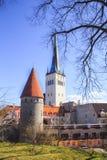 Hermosa vista de la torre Oleviste Churchand la pared de la fortaleza en Tallinn, Estonia Fotos de archivo libres de regalías