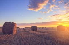 Hermosa vista de las balas de heno en el campo después de cosechar iluminada por los rayos pasados del sol poniente imagenes de archivo