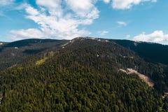 Hermosa vista de las montañas cárpatas en verano Imagenes de archivo