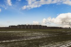 Hermosa vista de un campo nevado con la hierba amarilla contra un fondo del bosque del otoño, cielo azul con las nubes blancas Fotografía de archivo