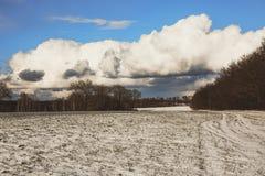 Hermosa vista de un campo nevado con la hierba amarilla contra un fondo del bosque del otoño, cielo azul con las nubes blancas Imagenes de archivo