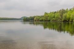 Hermosa vista de un lago con muchos árboles y un cielo gris fotos de archivo libres de regalías