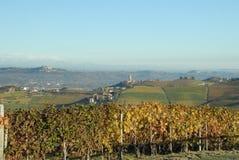 Hermosa vista de viñedos italianos Fotografía de archivo