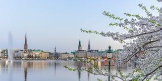 Hermosa vista del ayuntamiento de Hamburgo - río de Rathaus y de Alster en la tarde de la ganancia de la primavera imagenes de archivo