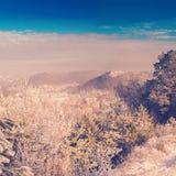 Hermosa vista del bosque del invierno en Kremenets Fotos de archivo libres de regalías