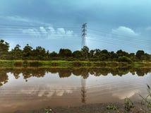 hermosa vista del campo de arroz en una tarde Foto de archivo libre de regalías