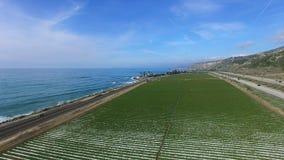 Hermosa vista del campo de maíz cerca del Océano Pacífico y del sistema de irrigación almacen de metraje de vídeo