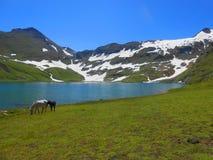 Hermosa vista del lago Dusdhipatsar con los caballos foto de archivo
