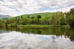 Hermosa vista del lago en verano del bosque Fotos de archivo