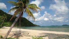 Hermosa vista del mar, de la playa y de la palmera con el oscilación almacen de metraje de vídeo