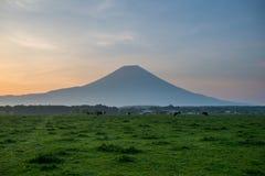 Hermosa vista del monte Fuji y del campo Fotos de archivo