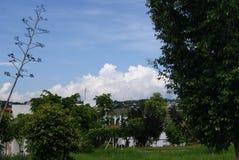 Hermosa vista del parque con día soleado hermoso fotografía de archivo
