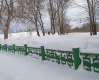 Hermosa vista del parque nevoso del invierno en día frío Imágenes de archivo libres de regalías