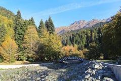 Hermosa vista del puente de madera sobre el río de la montaña en otoño Abjasia Paisaje hermoso fotografía de archivo libre de regalías