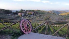 Hermosa vista del puesto de observación de colinas y de valles de viñedos en Italia en la puesta del sol metrajes