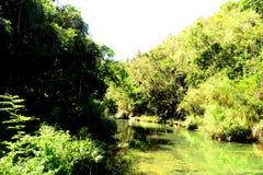 Hermosa vista del valle del EL Nicho Cienfuegos, Cuba fotografía de archivo libre de regalías