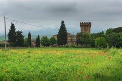 Hermosa vista dramática de campos y de prados verdes en la puesta del sol en Toscana fotografía de archivo libre de regalías