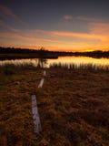 Hermosa vista en el lago del pantano cerca de una pista de senderismo durante una puesta del sol asombrosa Foto de archivo libre de regalías
